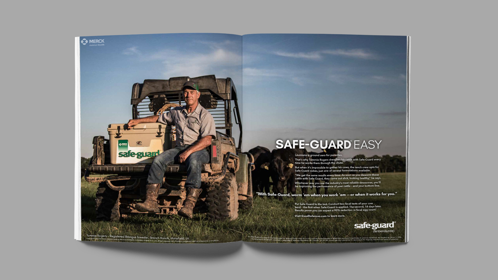 SafeGuard magazine ad