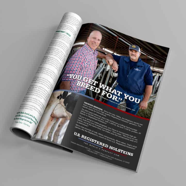Holstein Magazine 2
