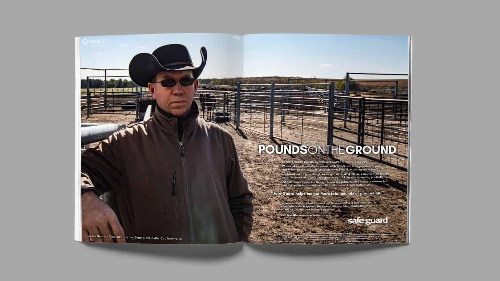 SafeGuard magazine ad